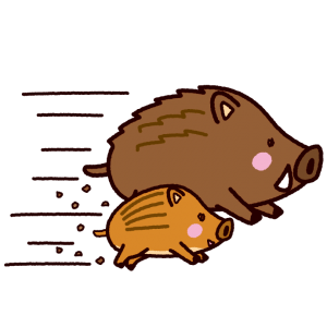 illustkun-01339-wild-boar